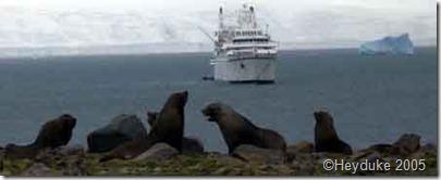 261 seals and ship