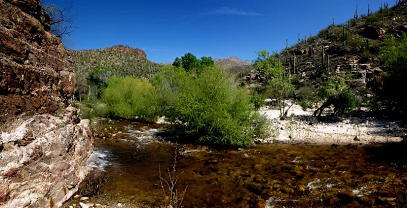 Sabino Creek Pano