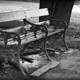 Empty Bench by Prasanta Das - Artistic Objects Furniture ( bench, park, empty, city )