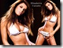 desktop Wallpaper elisabetta canalis 1024x768