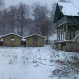 11-01-23_Veverita_WinterSafari