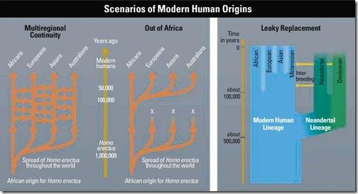 origen_humanos