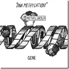 dna-methylation-jk-1