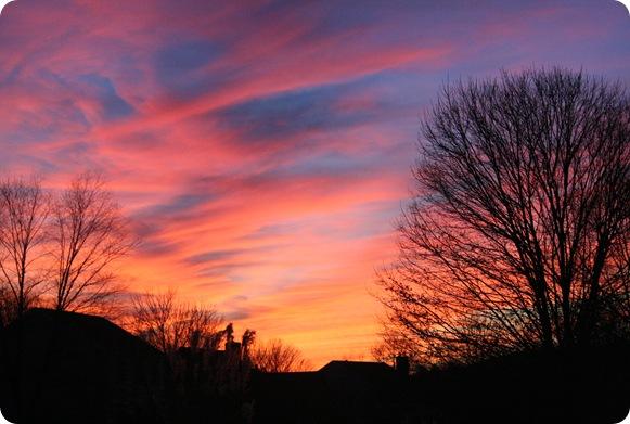 january 2011 040