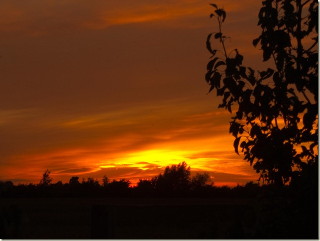 Lincolnshire Sunset