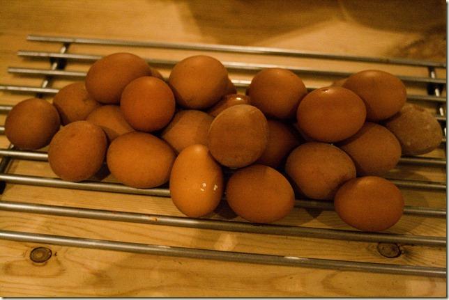 missing-eggs