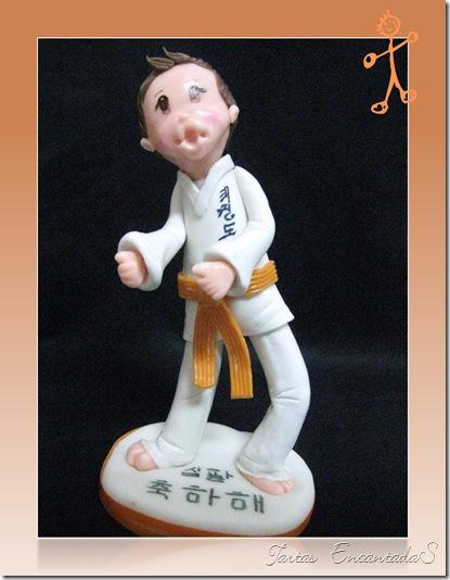 Topper Judoka