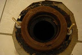 Hình: Vòng sáp (wax ring)