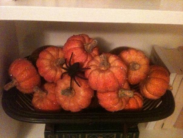 Abby_Pumpkins