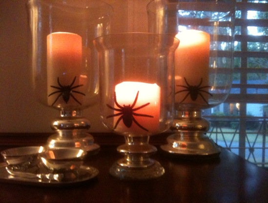 spiders5
