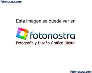 Foto coloreada