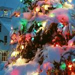 christmas_tree_1024.jpg