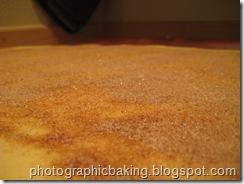 Cinnamon sugar landscape