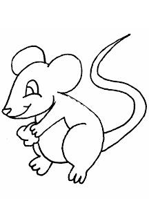 raton_1.jpg