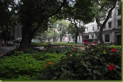 China_20091128_1409_Day10