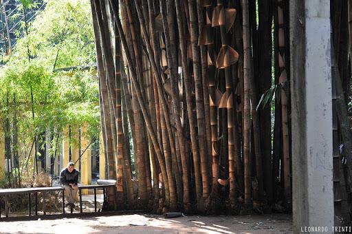 Bambushorst