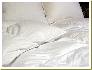Canadian-Goose-Down-Bedding-18036