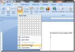 insert excel spreadsheet
