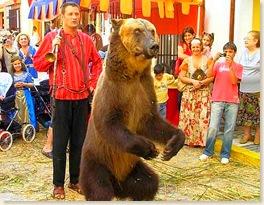 circo_dancing-bear
