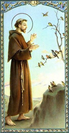 Sveti Franjo razgovara s pticama