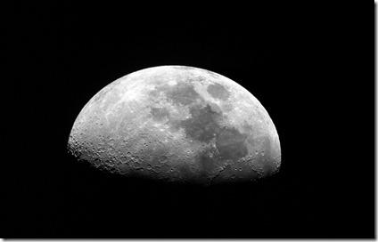 Luna 081 iris