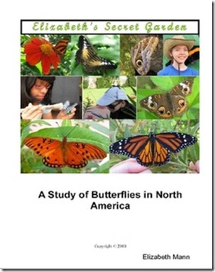 an analysis of white butterfly a novel Cabbage white butterfly, pieris rapae page 40  potential interpretation  regarding the evolution of butterfly-plant pollination interactions.