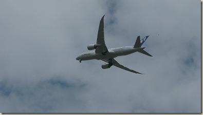 plane 5 008