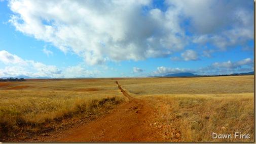 San Rafael Grasslands_013