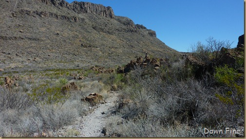 Big Bend Ranch State park_017