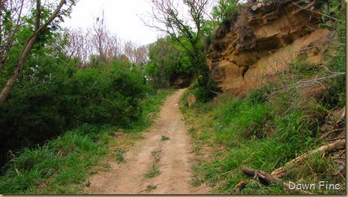 las palamas trail_006