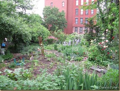 sams garden_20090528_020