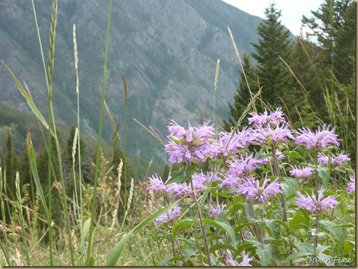 pine creek lakes hike_20090829_200