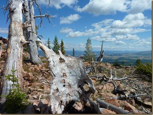 Bunson peak hike_20090901_038