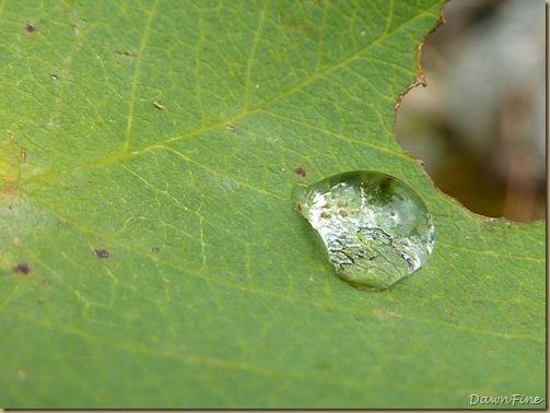 phelps lake_20090913_043