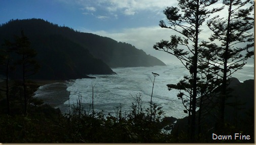 oregon coast drive_035