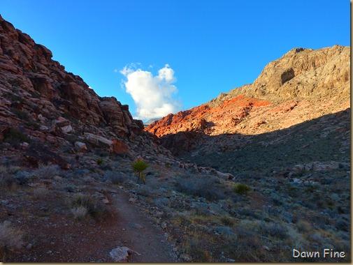 calico hike w David_034