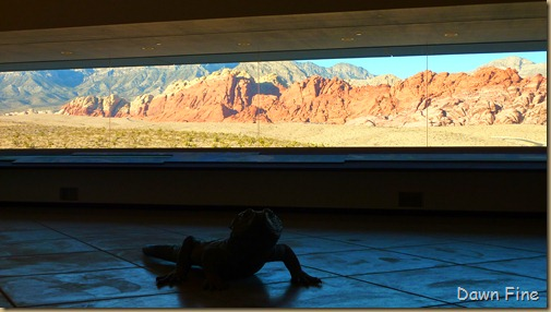 Red Rock Canyon Visitors Center (6)
