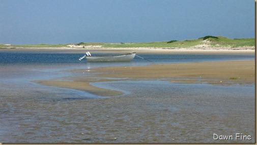 south beach birding_111
