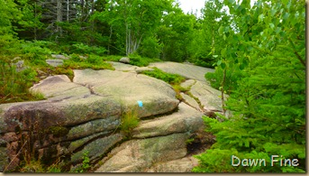 Gorham mt hike_028
