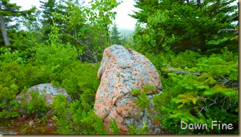 Gorham mt hike_118