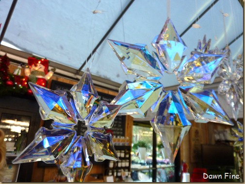 Christmas at the Garden Shop, Apex, NC_035