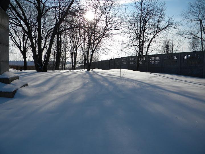 Буки, вигляд взимку