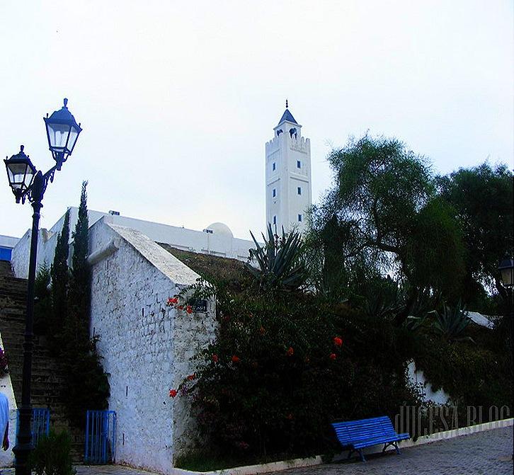 TUNISIA 2009 115