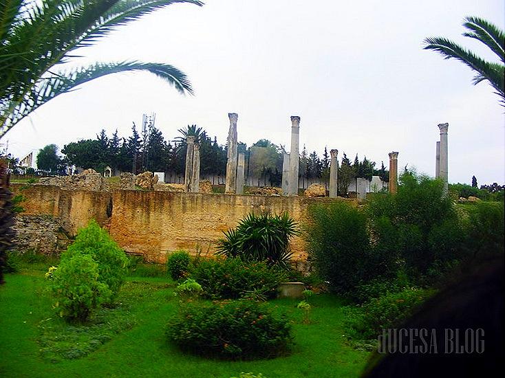 TUNISIA 2009 109