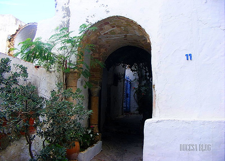 TUNISIA 2009 125