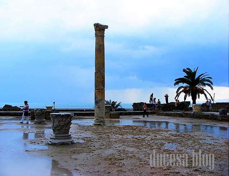 TUNISIA 2009 176