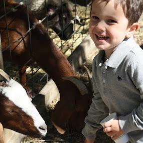 He loves that the goats love him! by Judy B - Babies & Children Children Candids