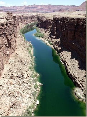 10 Colorado River upstream from Navajo Bridge Marble Canyon AZ (765x1024)