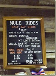 06 Mule rides sign above Mule desk in main lobby of Grand Lodge NR GRCA NP AZ (754x1024)