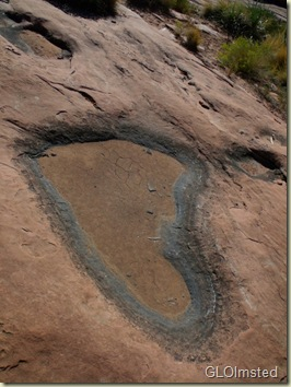 20 Water pocket on slickrock Tuweep GRCA NP AZ (768x1024)